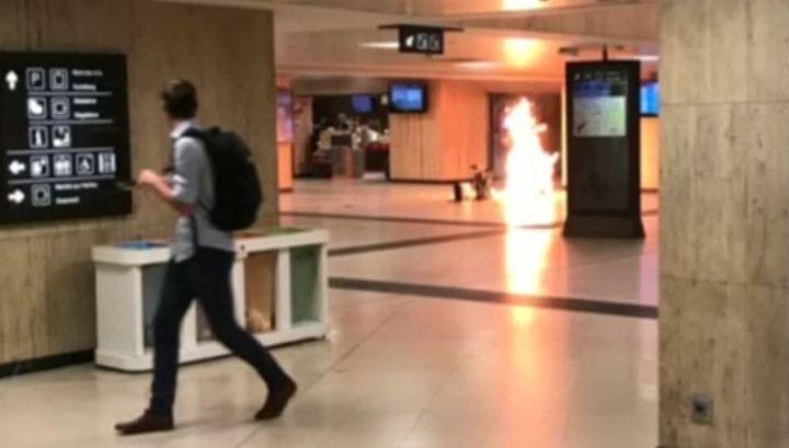 Брюссельский террорист опознан