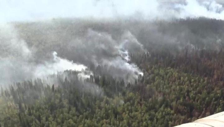 Борьбу с пожарами в Сибири осложняет аномальная жара