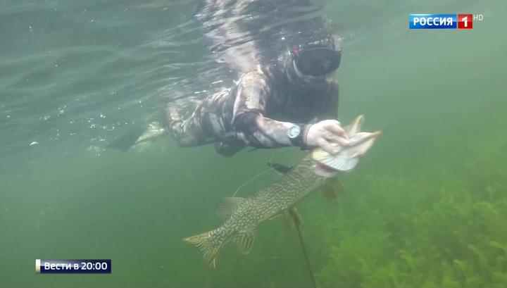 купить камеру для рыбалки зимой