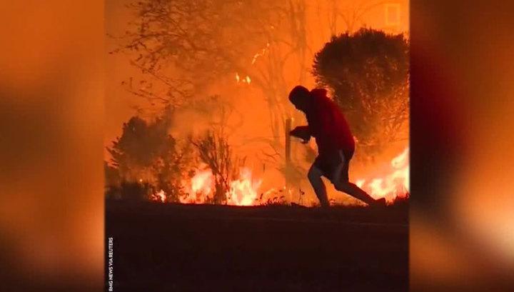 Мужчина рискнул жизнью, спасая кролика из огня. Видео