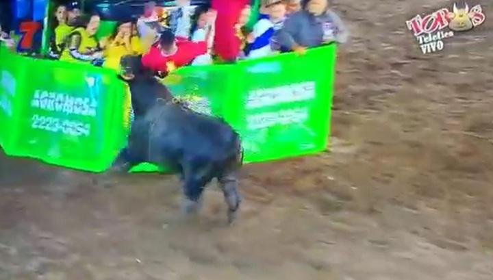 Невезучий тореадор угодил на рога сразу двум быкам в Коста-Рике
