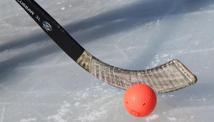 Хоккей с мячом. Юниоры России стали полуфиналистами чемпионата мира