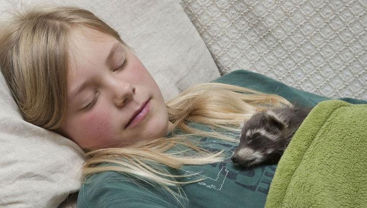 Исследование: О чём люди обычно болтают во сне