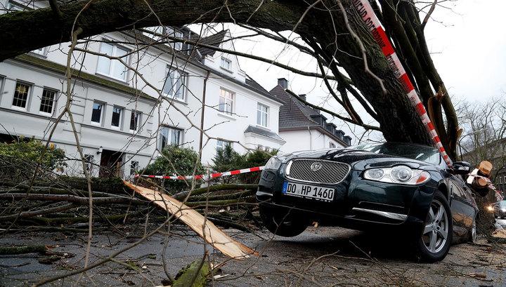 Ураган причинил Нидерландам ущерб в 90 миллионов евро