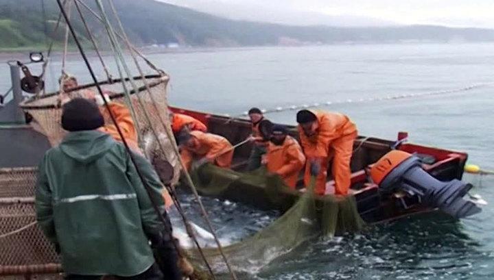 Норвегия не смогла найти замену российскому рыбному рынку