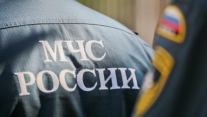 профессиональных услуг новосибирск чп в детском саду действительна только для