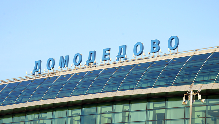 Голый мужчина не добежал до самолета в Домодедове