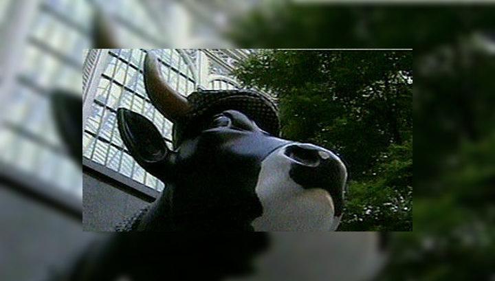 В глобальном потеплении климата виноваты коровы
