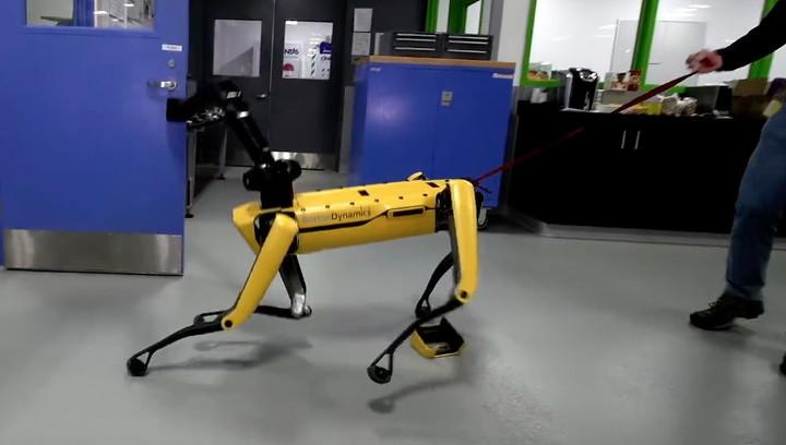 В Boston Dynamics учат роботов противостоять человеку