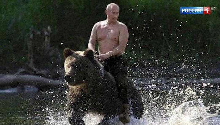 """Картинки по запросу """"путин на медведе видео"""""""