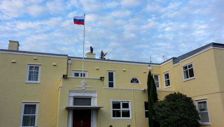 В Новой Зеландии провели пикет с призывом не голосовать на выборах президента РФ