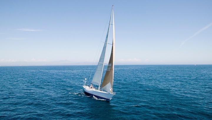 Спустя пять лет учёные подтвердили предположение адвоката о самом длинном морском пути строго по прямой линии.