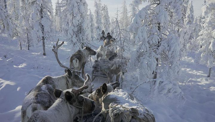 Картинки по запросу великий северный путь круглов
