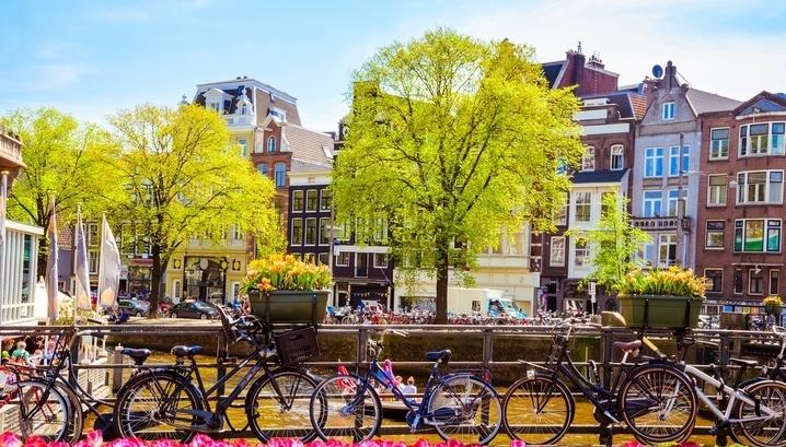 Страна тюльпанов, технологий и свободы: что купить в Голландии по цене двушки в Москве