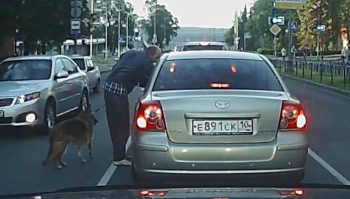 Неадекватный мужчина с собакой атаковал автомобилистов в Петрозаводске. Видео