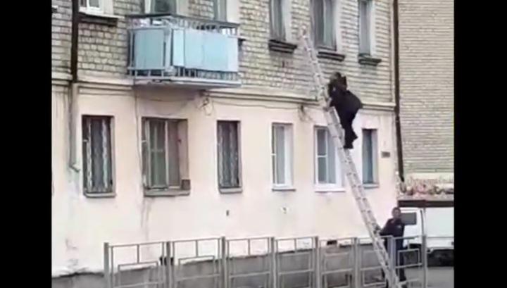 Штурм квартиры с мужчиной, устроившим стрельбу Забайкалье, попал на видео