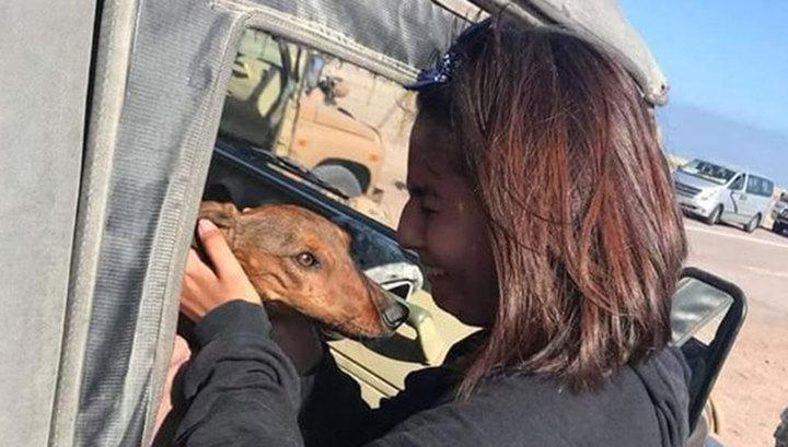 Хозяйка нашла таксу, выпавшую из самолета и шесть дней скитавшуюся по пустыне