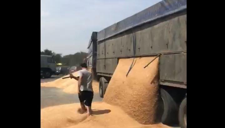 Недовольный водитель разгрузил зерно на трассе под Ростовом назло полицейским. Видео