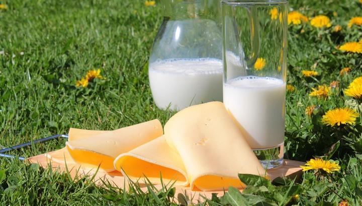 Учёные уверены, что не стоит бояться цельного молока и жирных молочных продуктов: пользы от их употребления больше, чем вреда.