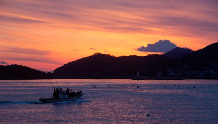 В Тихом океане у берегов Японии столкнулись два судна: четыре человека пропали без вести