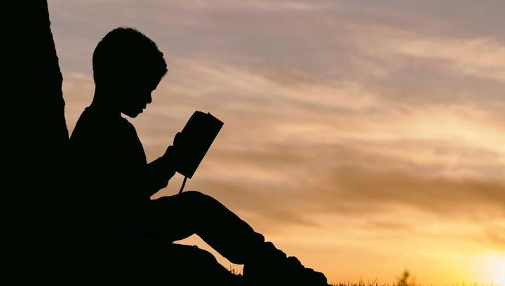 Учёные назвали три полезных навыка, которые формирует чтение книг в детстве