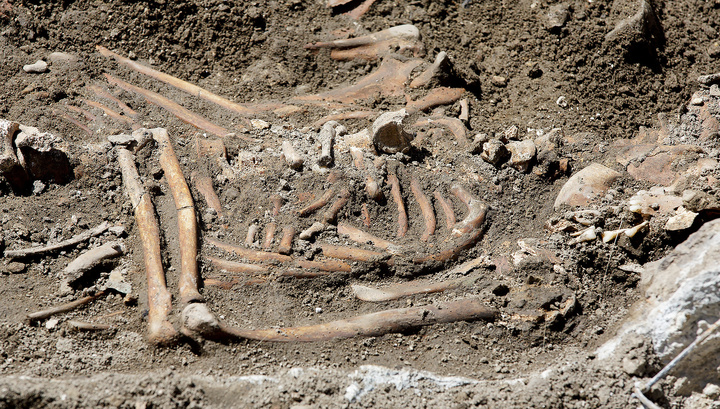 В траншее теплотрассы на западе Москвы нашли четыре скелета