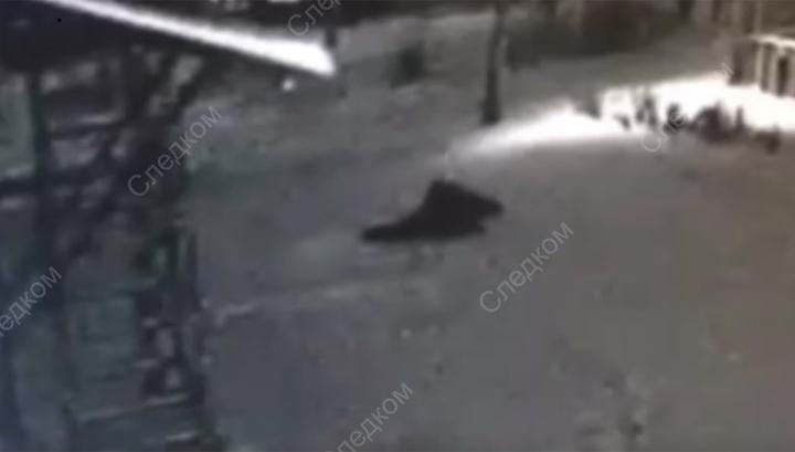 Опубликовано видео нападения насильника на 10-летнюю девочку в Красноярском крае