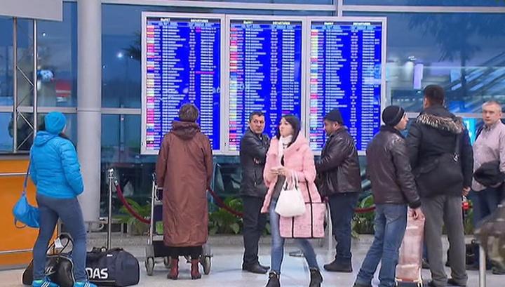 Попал под самолет: инцидент в Шереметьеве расследуют сразу три ведомства