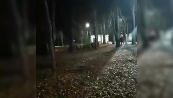 В Центральном парке Ставрополя произошла перестрелка. Видео