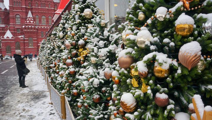 Синоптики предсказали погоду в новогоднюю ночь