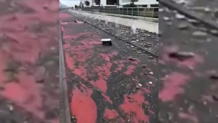 Сильный шторм повредил набережную в Олимпийском парке Сочи