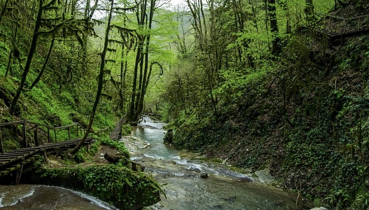 Оползень в Агурском ущелье перекрыл туристический маршрут