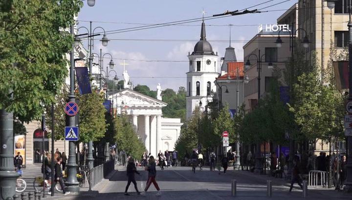 Выборы в Литве: кто бы ни стал президентом, политика в отношении России не изменится