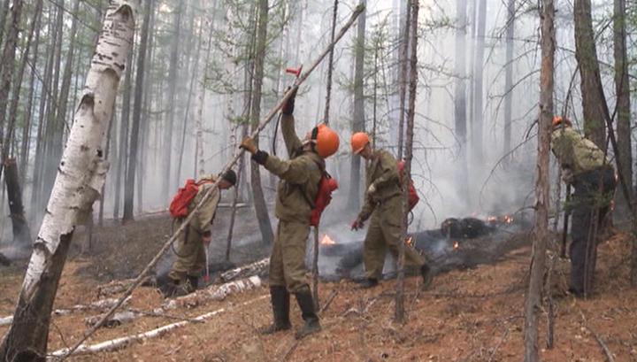 Ситуация с лесными пожарами в России постепенно улучшается