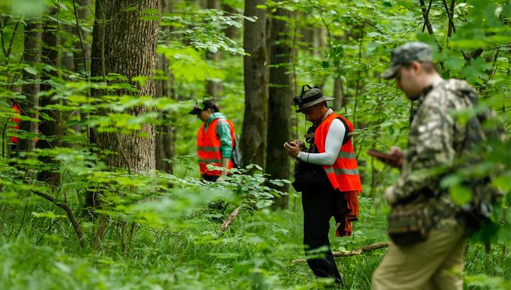 В Омской области ищут потерявшегося в лесу ребенка