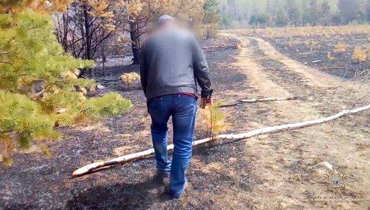 В Забайкалье пастух сжег 600 гектаров леса во время приготовления обеда