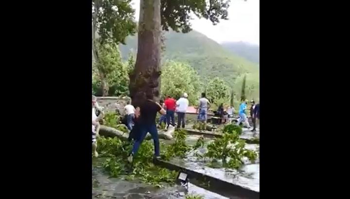 Ветвь древней чинары травмировала 19 человек в Азербайджане, пострадали россияне