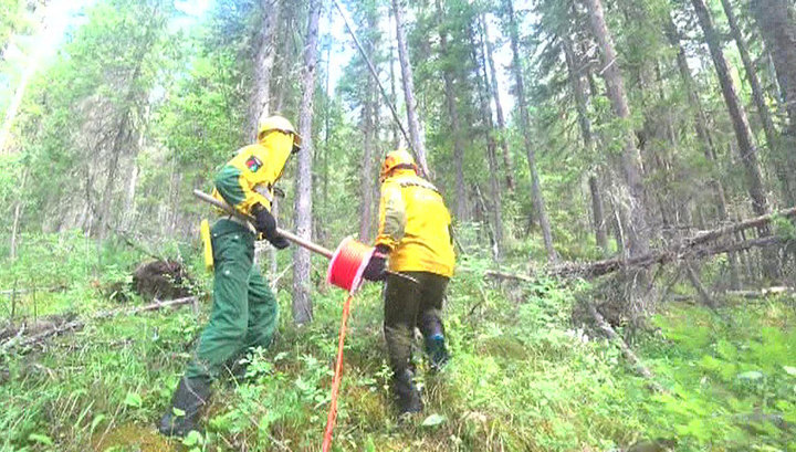 В Красноярском крае горит почти миллион гектаров леса