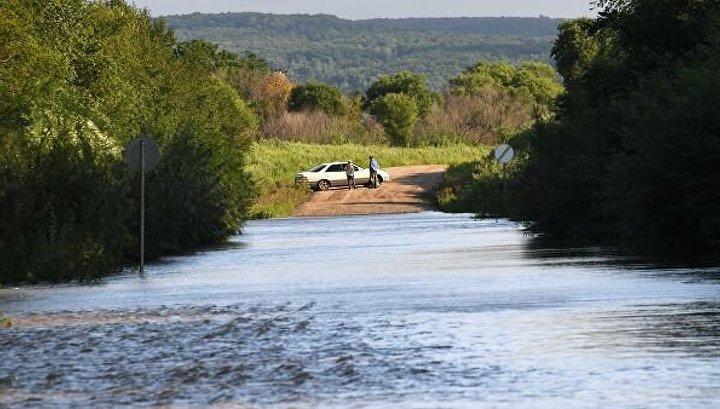 Страховые компании отказываются работать с приморскими фермерами из-за паводков