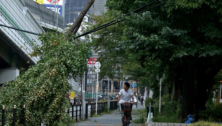 Тайфун в Японии: отменено более 200 авиарейсов, 33 тысячи домов без света