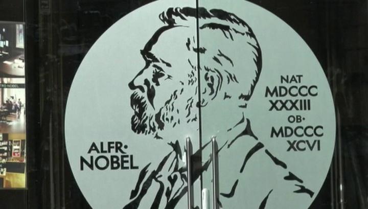 Нобелевская премия по химии присуждена за энергоемкие батарейки