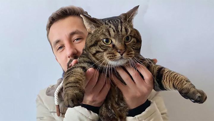 """Владелец толстого кота станет акционером """"Аэрофлота"""""""