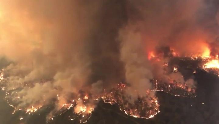 Австралию уничтожают лесные пожары, а Индонезию - наводнение