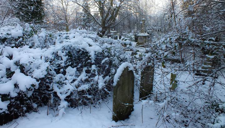 Житель Тамбовской области надругался над 16-летней девушкой на кладбище