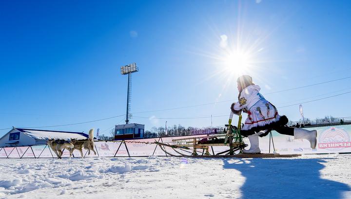 """Стартовала """"Берингия"""" - камчатская традиционная гонка на собаках"""