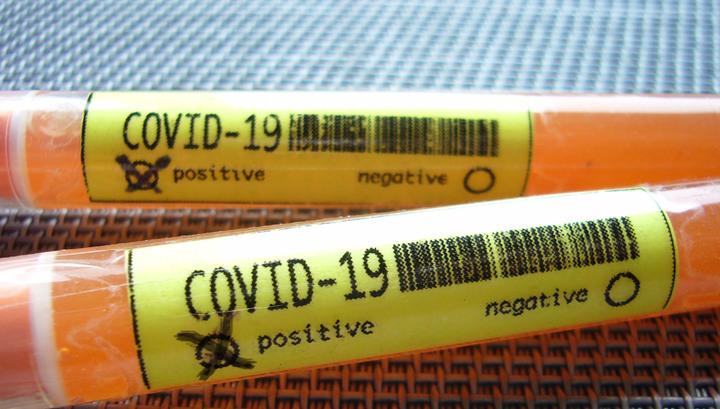 коронавирус у щенка как лечить