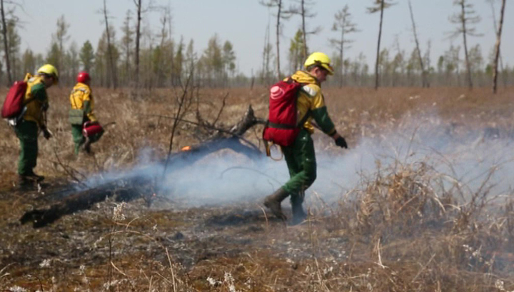 Природные пожары: в России горит 60 тысяч гектаров леса