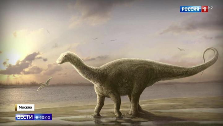 Научно доказано, что 165 миллионов лет назад на территории Подмосковья жили динозавры