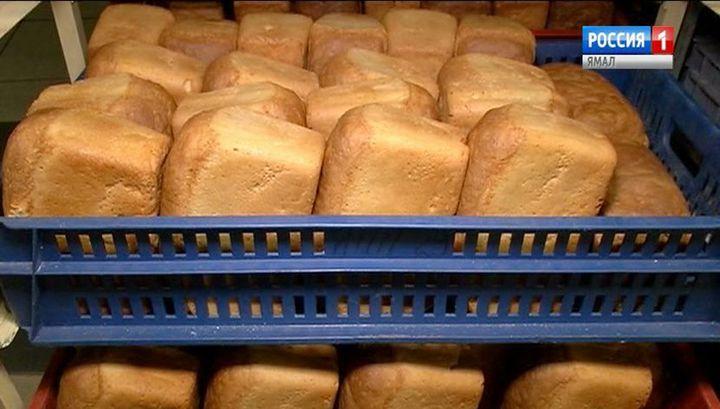 В России создадут стабфонд зерна для мукомолов и хлебопеков