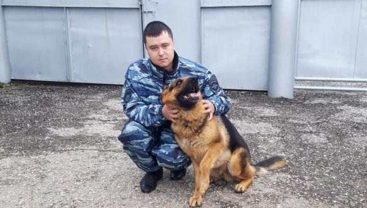 Полицейская овчарка нашла мальчика, оказавшегося в болоте после похода на кладбище